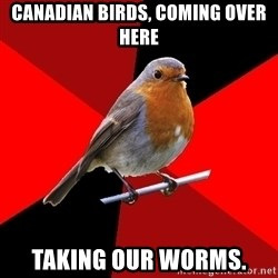 Retail Robin - Canadian birds, coming over here Taking our worms.