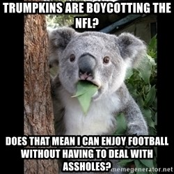 Koala can't believe it - trumpkins are boycotting the nfl? does that mean i can enjoy football without having to deal with assholes?