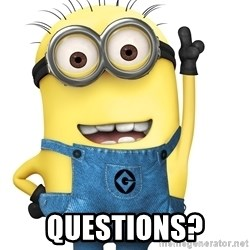 Despicable Me Minion - QUESTIONS?