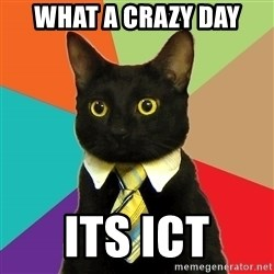 Business Cat - WHAT A CRAZY DAY ITS ICT