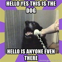 Yes, this is dog! - hello yes this is the dog  hello is anyone even there