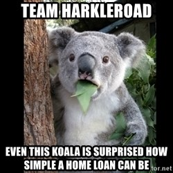Koala can't believe it - Team Harkleroad  Even this Koala is surprised how simple a home loan can be