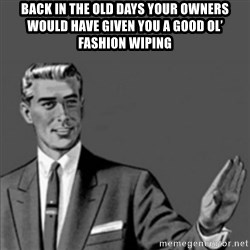 Correction Guy - Back in the old days your owners would have given you a good ol' fashion wiping