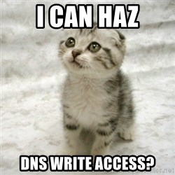 Can haz cat - I can haz dns write access?