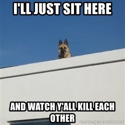 Roof Dog - i'll just sit here and watch y'all kill each other