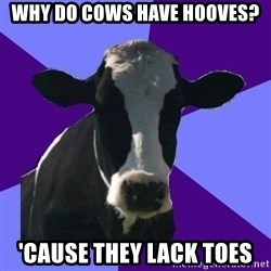 Coworker Cow - Why do cows have hooves? 'Cause they lack toes