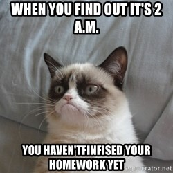Grumpy cat good - When you find out IT'S 2 A.M. YOU HAVEN'TFINFISED YOUR HOMEWORK YET