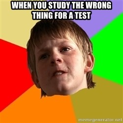 Angry School Boy - when you study the wrong thing for a test