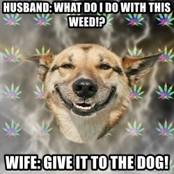 Stoner Dog - Husband: what do i do with this weed!? Wife: give it to the dog!