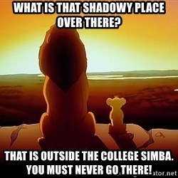 simba mufasa - What Is That Shadowy Place Over There?  That Is Outside The College SIMBA. You Must Never GO There!
