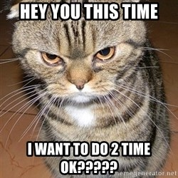 angry cat 2 - Hey you this time  I want to Do 2 time ok?????