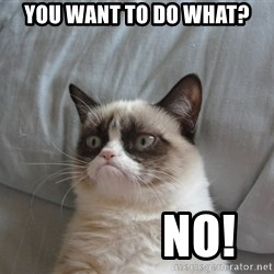 Grumpy cat good - You want to do what?              No!