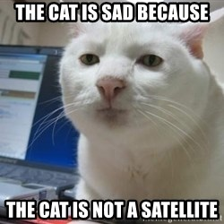 Serious Cat - THe cat is sad because the cat is not a satellite