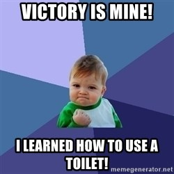 Success Kid - VICTORY IS MINE! I LEARNED HOW TO USE A TOILET!