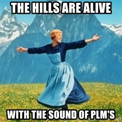 Sound Of Music Lady - the hills are alive with the sound of plm's