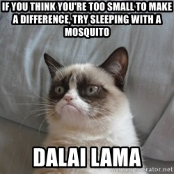 Grumpy cat good - If you think you're too small to make a difference, try sleeping with a mosquito Dalai lama