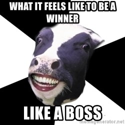 Restaurant Employee Cow - what it feels like to be a winner like a boss