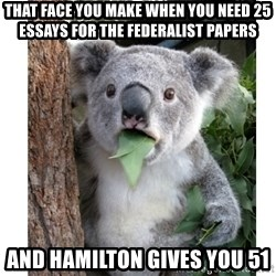 surprised koala - That face you make when you need 25 essays for the federalist papers and hamilton gives you 51