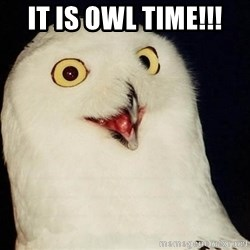 O Rly Owl - It is OWL Time!!!