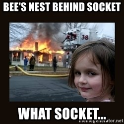 burning house girl - BEE'S NEST BEHIND SOCKET  WHAT SOCKET...