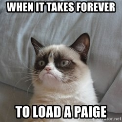 Grumpy cat 5 - when it takes forever  to load a paige