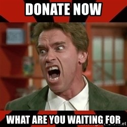 Arnold Schwarzenegger 1 - donate now what are you waiting for