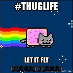 Irresponsible Nyan Cat - #thuglife LET IT FLY 😂😂😂😂😂😂😂😂😂😂