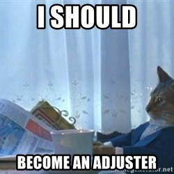 newspaper cat realization - I should become an adjuster