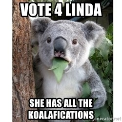 surprised koala - vote 4 linda she has all the koalafications