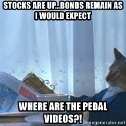 newspaper cat realization - Stocks are up...BONDS remain as I would expect where are the pedal videos?!