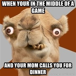 Crazy Camel lol - When your in the middle of a game  and your mom calls you for dinner
