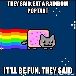 Irresponsible Nyan Cat - they said, eat a rainbow poptart it'll be fun, they said
