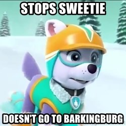 Bad Luck Everest  - Stops sweetie Doesn't go to barkingburg