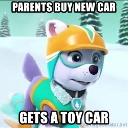 Bad Luck Everest  - Parents buY new car Gets a toY car