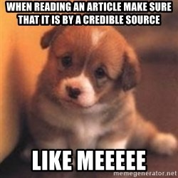cute puppy - When reading an article make sure that it is by a credible source Like meeeee