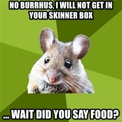 Prospective Museum Professional Mouse - No Burrhus, i will not get in your skinner box ... wait did you say food?