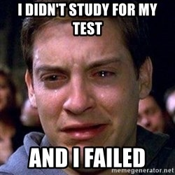 spiderman cry - i didn't study for my test  and i failed