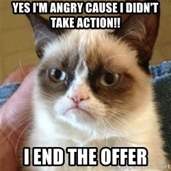 Grumpy Cat  - Yes I'm angry cause I didn't take action!! I end the offer
