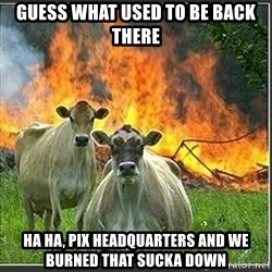 Evil Cows - Guess what used to be back there Ha Ha, PIX headquarters and we burned that sucka down