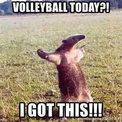 Anteater - Volleyball Today?! I got this!!!