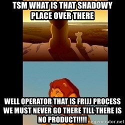 Lion King Shadowy Place - TSM what is that shadowy place over there well operator that is frijj process we must never go there till there is no product!!!!!