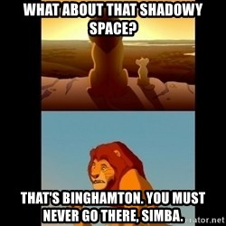 Lion King Shadowy Place - what about that shadowy space? That's Binghamton. You must never go there, simba.