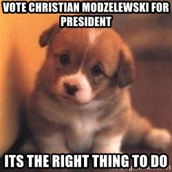cute puppy - Vote Christian Modzelewski for president Its the right thing to do