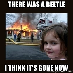 burning house girl - There was a Beetle I think iT's gone now