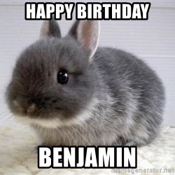 ADHD Bunny - Happy birthday benjamin
