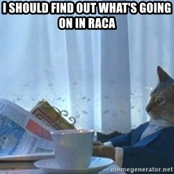 newspaper cat realization - I should Find out WHAT'S GOING ON IN RACA