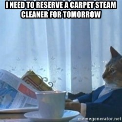 newspaper cat realization - I need to reserve a carpet steam cleaner for tomorrow