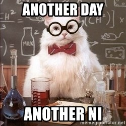 Chemistry Cat - another day  another ni