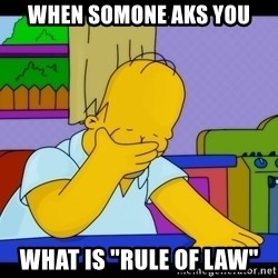 """Homer Facepalm - when somone aks you what is """"rule of law"""""""