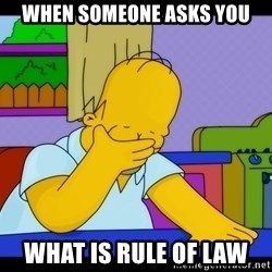 Homer Facepalm - when someone asks you what is rule of law